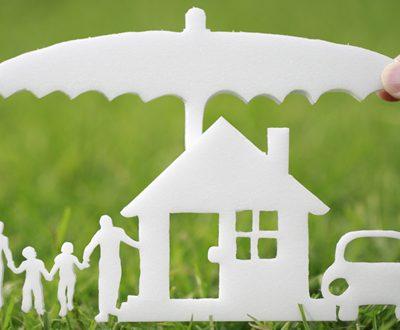 insurance_loan2